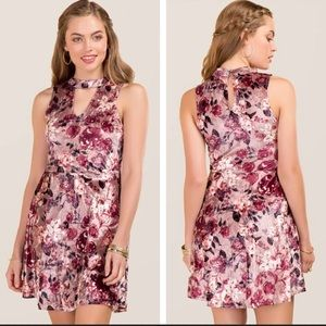 Francesca's Naya floral halter A-line dress